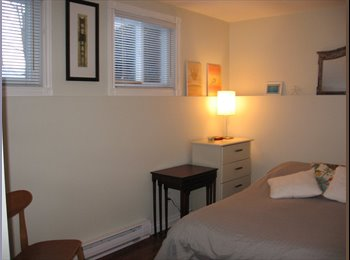 Room to Sublet to Professionals or Students