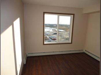 EasyRoommate CA - room for rent  - North West, Edmonton - $650 pcm