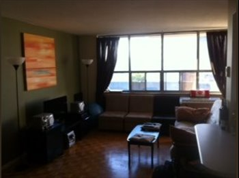 EasyRoommate CA - Spacious Apartment in the Annex - Incredible place - Annex, Toronto - $950 pcm