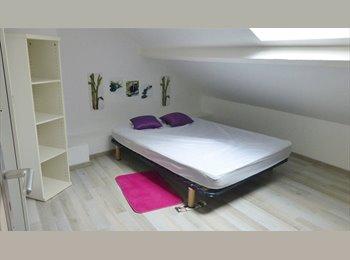 2 chambres disponible dans colocation