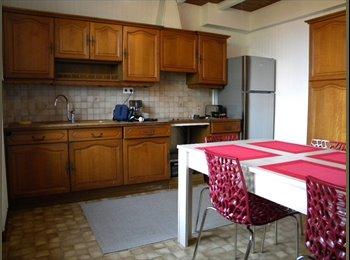 Appartager FR - LOCATION 4 CHAMBRES DANS MAISON INDIVIDUELLE - Vieux-Charmont, Belfort - 250 € / Mois