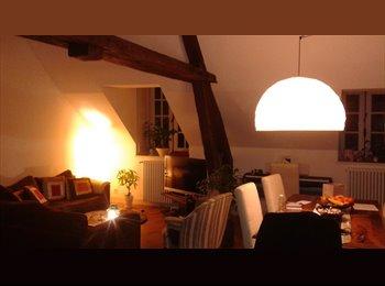 Appartager FR - Recherche colocataire - Orléans, Orléans - 420 € / Mois