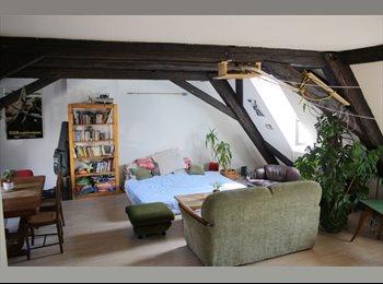 Appartager FR - 2 chambres en sous location à la Krutenau en mai - Krutenau, Strasbourg - 350 € / Mois