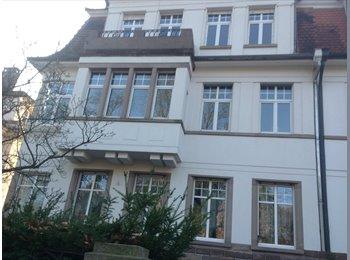 Appartager FR - Colocation à 3 dans un appartement de 110m2 - l'Orangerie, Strasbourg - 400 € / Mois