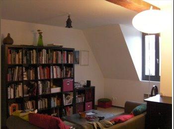 Appartager FR - Collocation dans le Vieux Lille - Vieux-Lille, Lille - 400 € / Mois