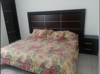 Se rentan cuartos para señoritas en Col La Calma