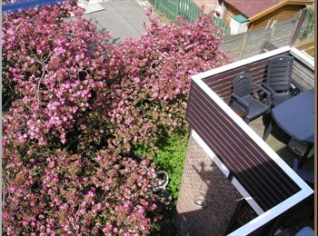 EasyKamer NL - Furnished rooms for rent - Delfshaven, Rotterdam - € 349 p.m.