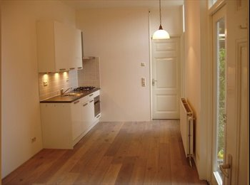 EasyKamer NL - Nice, independent apartment for one person, Delft - Delft, Delft - € 725 p.m.