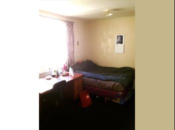 NZ - Room available for sub-letting from 5th of May - Strathmore Park, Wellington - $150 pw