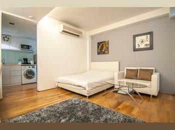 Modern Luxurious 1 Bedroom Studio