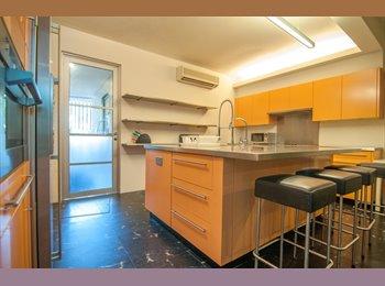 1 Bedroom Studio (With Chef's Dream Kitchen)