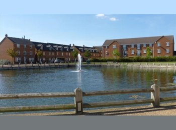 EasyRoommate UK - STUNNING Double room - A MUST SEE - Hampton, Peterborough - £390 pcm