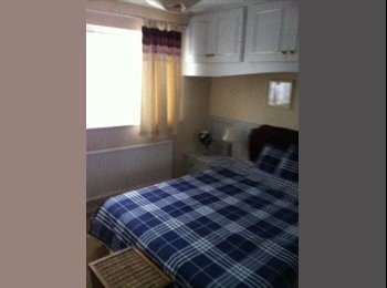 Large  double room with en suite in Chineham