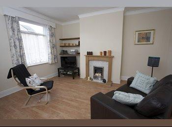 EasyRoommate UK - Lovely big room in Bradford - Great Horton, Bradford - £350 pcm