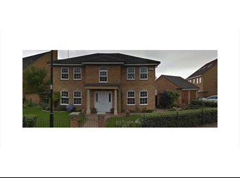 EasyRoommate UK - Furnished Double in Exec Property - Rugby, Rugby - £425 pcm