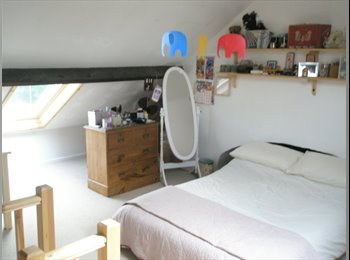 EasyRoommate UK - Double Room in lovely house right next to town! - Abington, Northampton - £425 pcm