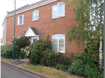 EasyRoommate UK - Double room in Hampton Hargate - Hampton, Peterborough - £395 pcm
