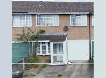 3 bed student House close to Uni.