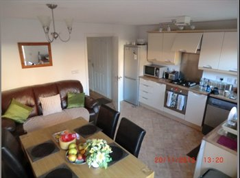 EasyRoommate UK - Christopher - Great Oakley, East Northamptonshire and Corby - £320 pcm