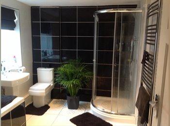 EasyRoommate UK - MODERN DOUBLE ROOM FOR RENT!!! - Coseley, Wolverhampton - £400 pcm