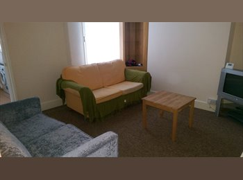 EasyRoommate UK - Quiet Professional House - Exeter, Exeter - £440 pcm