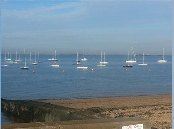 EasyRoommate UK - Share a house 5 minutes stroll to the beach! - Southend-on-Sea, Southend-on-Sea - £500 pcm