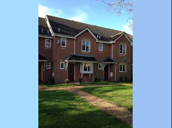 EasyRoommate UK - Large double room in lovely quiet house - Portswood, Southampton - £485 pcm