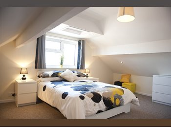 EasyRoommate UK - Brand New Professional House Share - 1 Room Left! - Stafford, Stafford - £455 pcm