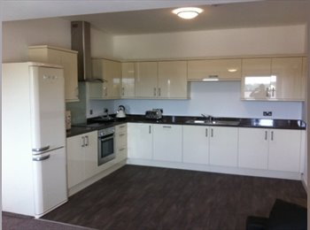 EasyRoommate UK - 1 room available in flat of 5 - Lancaster, Lancaster - £380 pcm