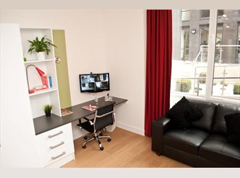 Spacious Student Studio Apartment Available