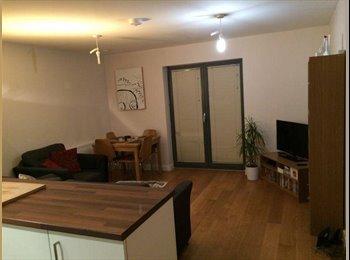 Double room in modern ground floor flat - Acton!!