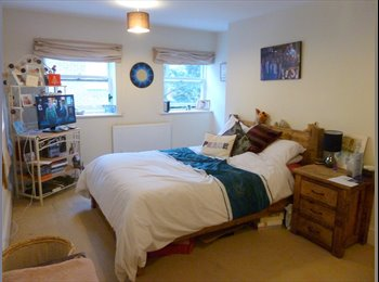 EasyRoommate UK - Double en-suite room in Alton. Great location - Alton, East Hampshire and Havant - £480 pcm