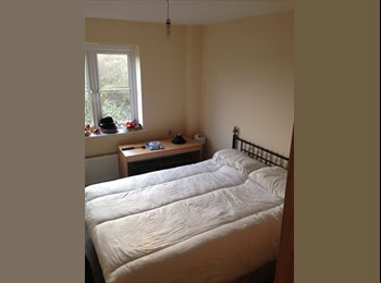 EasyRoommate UK - New estate - Stapely, Nantwich - Crewe, Chester - £400 pcm