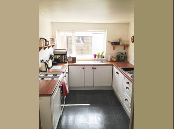 EasyRoommate UK - Bright and spacious double room - Modern + clean! - Exeter, Exeter - £490 pcm