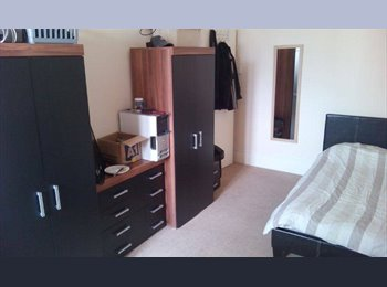 EasyRoommate UK - Large room available NOW!-Eastbourne - Eastbourne, Eastbourne - £460 pcm