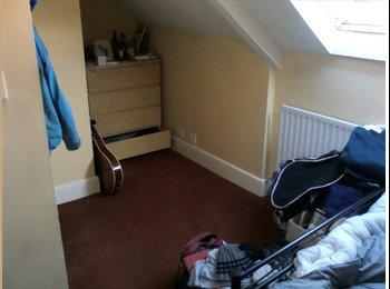 EasyRoommate UK - stunning views from a stunning house! - Fenham, Newcastle upon Tyne - £223 pcm