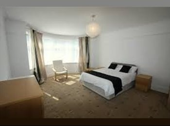 Modern Large Room available for Couples