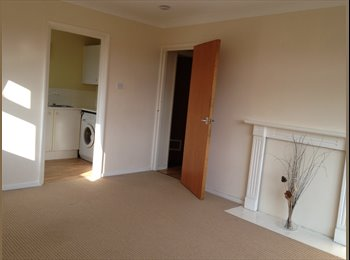 EasyRoommate UK - Large 1 Bedroom Flat - Little Billing, Northampton - £515 pcm