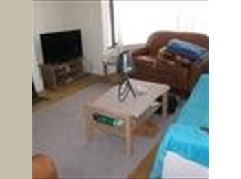 EasyRoommate UK - Kingsize double room in friendly 4 bed house share - Ecclesall Road, Sheffield - £320 pcm