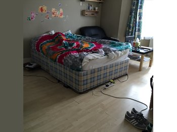 Fully furnished large double room for rent