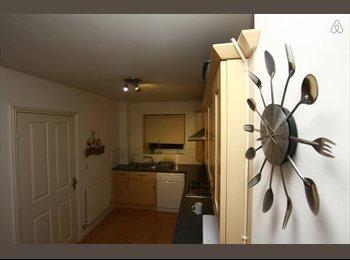 EasyRoommate UK - S2 Room to let - Norfolk Park, Sheffield - £350 pcm