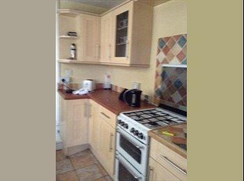 EasyRoommate UK - HOUSEMATE WANTED : Cosy Property on Portswood - Portswood, Southampton - £312 pcm