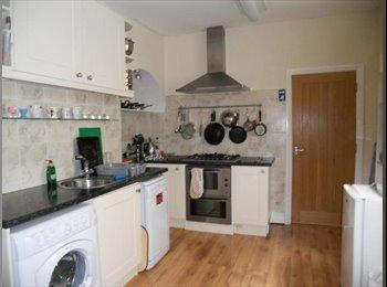EasyRoommate UK - En-suite Room in Heart of Exeter - Exeter, Exeter - £525 pcm