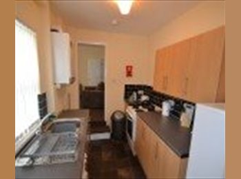 4 bed professional HMO to let