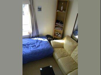 EasyRoommate UK - Lovely sunny room in city centre LONG TERM - Edinburgh Centre, Edinburgh - £325 pcm