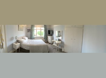 EasyRoommate UK - Beautiful room in clean spacious home w/ garden - Westbury on Trym, Bristol - £600 pcm