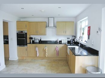 EasyRoommate UK - Amazing brand new refurbished house share! - Didsbury, Manchester - £495 pcm