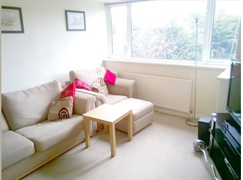 EasyRoommate UK - Room to Rent in Spacious, Relaxed 2 Bed Semi - Burley, Leeds - £318 pcm