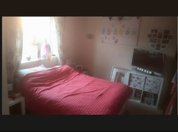 EasyRoommate UK - BOOM ROOM!!!!!!! - Llanishen, Cardiff - £230 pcm