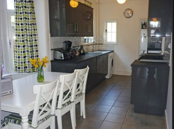 Double room in beautiful renovated house!